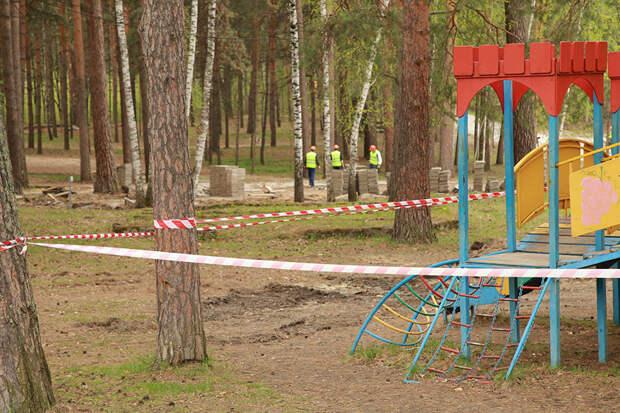 Что происходит в Заельцовском парке Новосибирска?