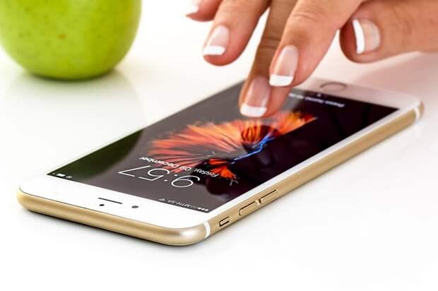 МВД рассказало о популярных схемах телефонных мошенников