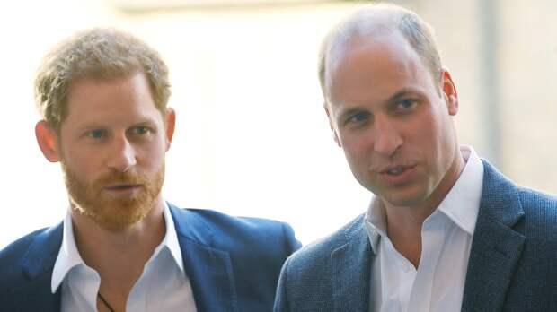Принцев Уильяма и Гарри на прощальной церемонии с дедушкой посадили напротив друг друга
