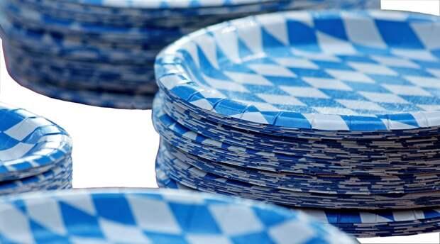 В Бабушкинском парке провели мастер-класс по изготовлению поделки из бумажных тарелок