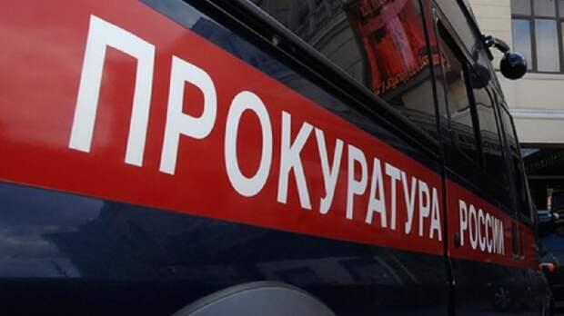 Видео с ребенком в луже под дождем заинтересовало новгородских прокуроров