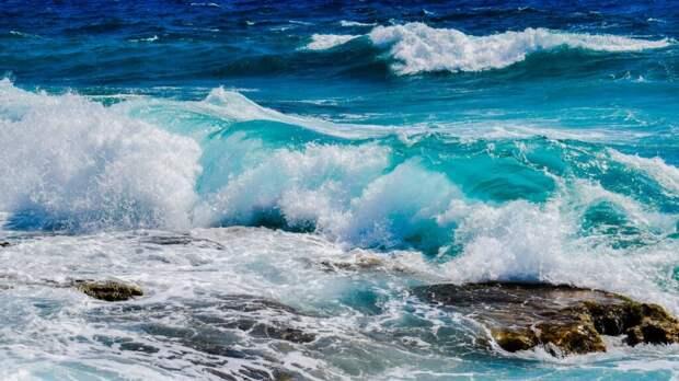 Исследование показало, что к 2100 году в поверхностных водах океанов и морей не смогут жить морские обитатели