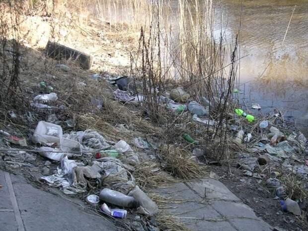 «Год экологии в Петербурге— бессмысленный и беспощадный»: в сети появились фото покрытой мусором Красненькой речки