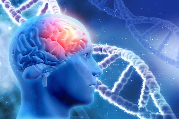 Вакцина от рака мозга прошла первую стадию клинических испытаний