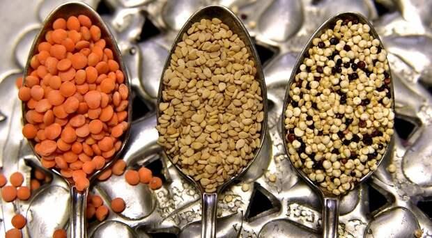 10 главных растительных источников белка: протеина вних неменьше, чем вмясе