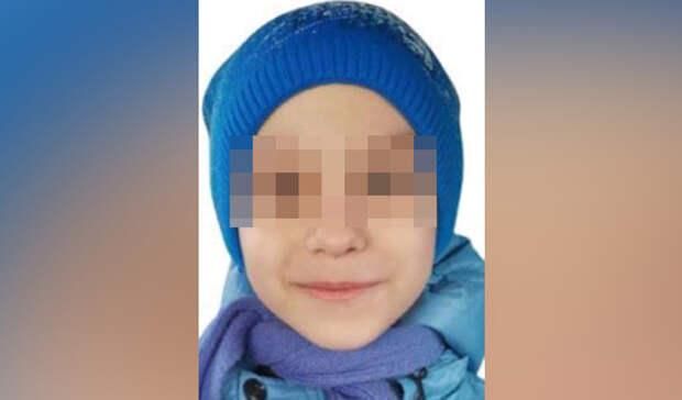 Волонтеры: поиски 8-летнего мальчика вБогородском районе прекращены