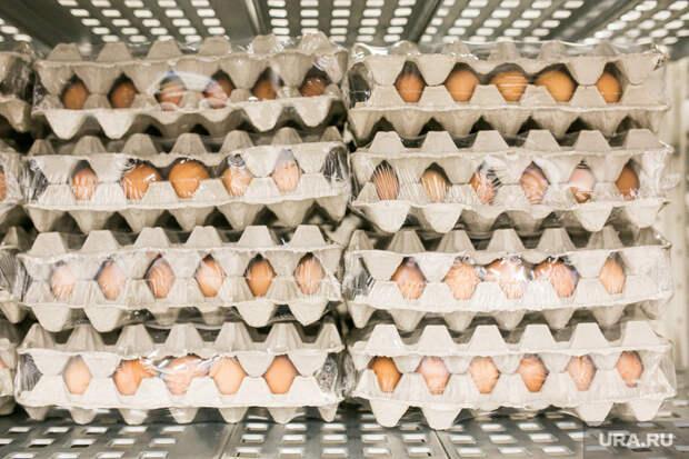 Уральский фермер: Германия иПольша оставят Россию без курятины