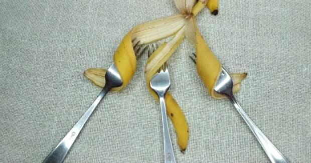 Так банановую кожуру вы еще точно не использовали: великолепный декор своими руками