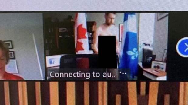Канадский депутат появился голым на онлайн-заседании