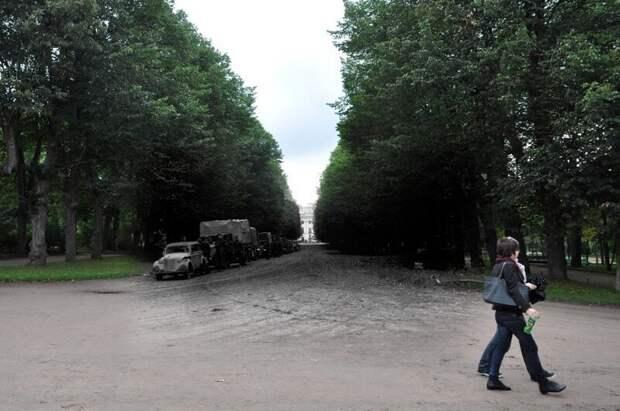 Павловск 1941-2011 Колонна немецкой техники на Тройной липовой аллее парка блокада, ленинград, победа