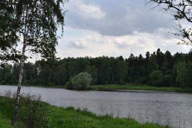 Долгие пруды – официальное место отдыха в этом сезоне