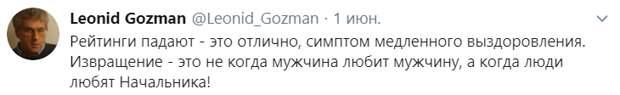 Гозман призывает своих сторонников к дискредитации власти ко дню голосования по поправкам в Конституцию