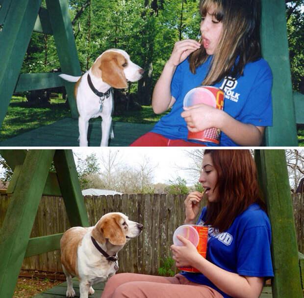 10 лет назад и сейчас до и после, друзья, собаки, фото