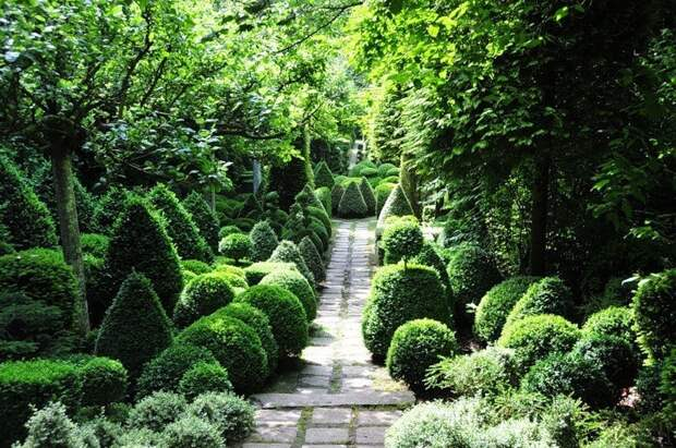 Топиарные сады - один из древнейших видов садового искусства