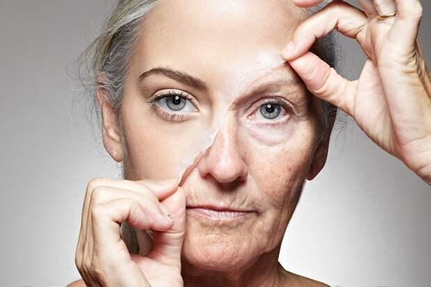 Обнаружена связь между старением и стрессом