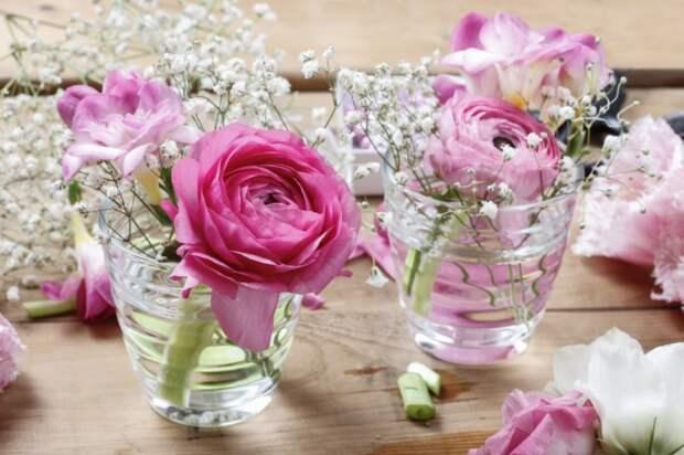 Цветы для сервировки