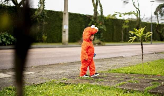 Пропавшего четырехлетнего ребенка нашли в Ялте