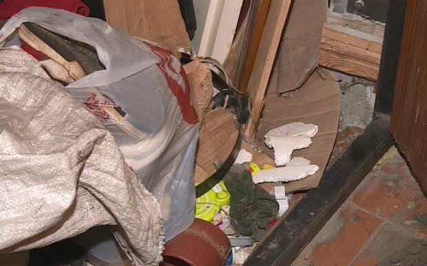 В Рязани мужчина таскает мусор в квартиру и справляет нужду в окно