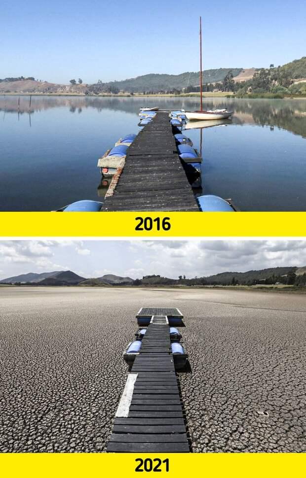 20+ фото, показывающих, что экологи даже преуменьшают проблемы планеты