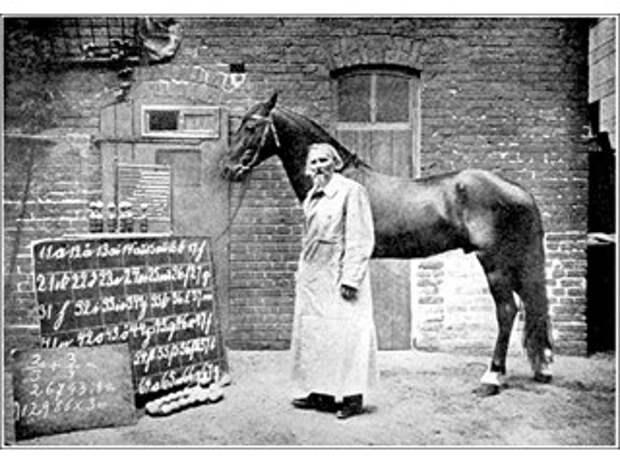 «Умный конь Ганс», интеллект которого в прошлом веке приравняли к человеческому