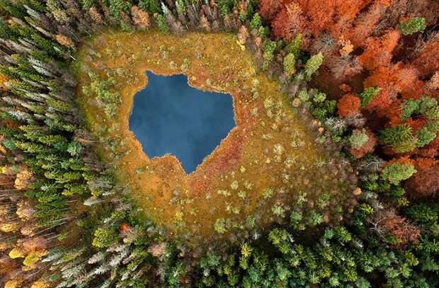 12 чарующих пейзажей, которые доказывают, что осень — гениальная художница!