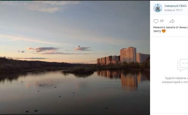 Фотокадр: закат и чайки на пруду в Северном