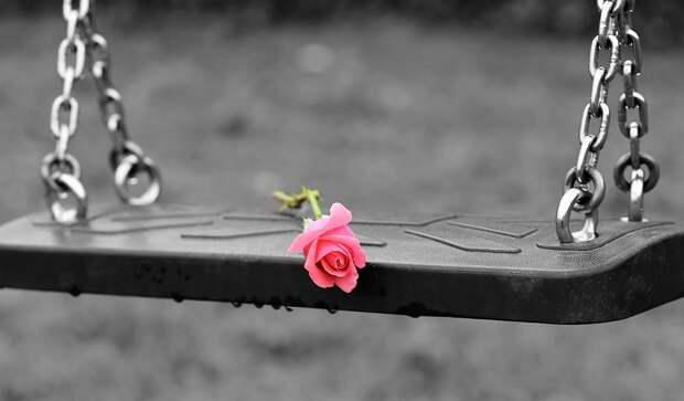 Розовая Роза На Пустые Качели