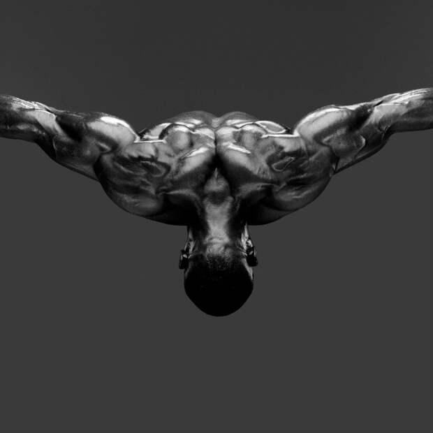 Пластика человеческого тела вфотографиях Говарда Шатца