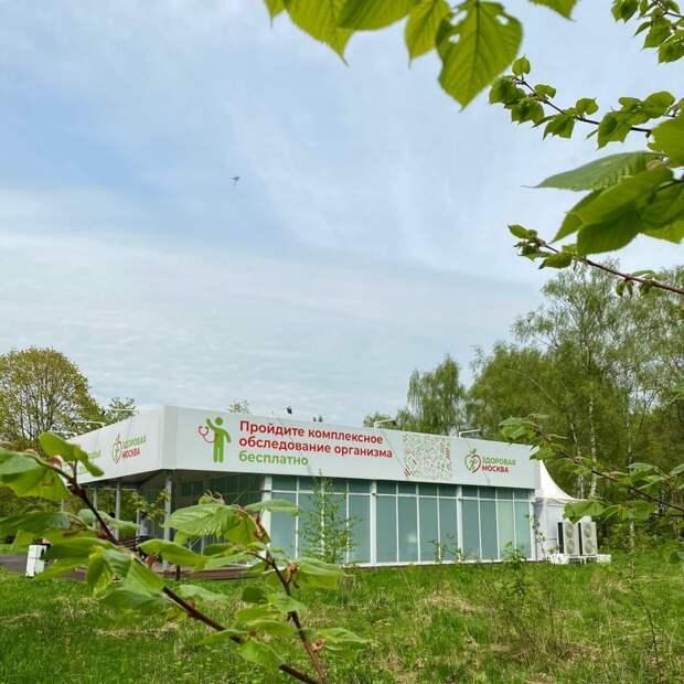 В парке «Северное Тушино» открылся павильон «Здоровая Москва»