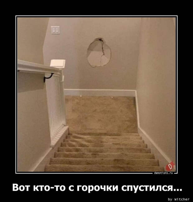 5402287_1612338972_demy8 (625x654, 57Kb)
