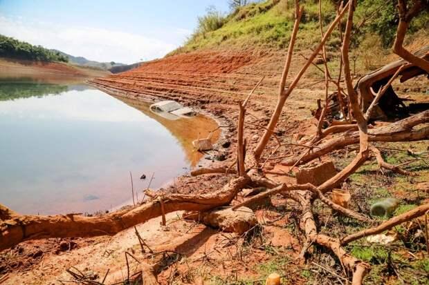 Ирак вдвое сократит посевы из-за дефицита воды для орошения