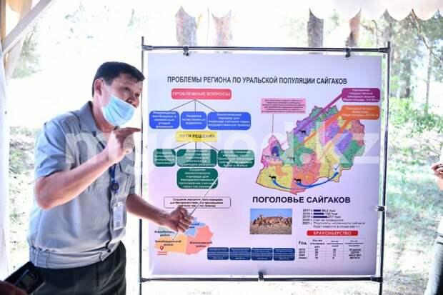 Министр экологии предложил создать природный резерват в ЗКО