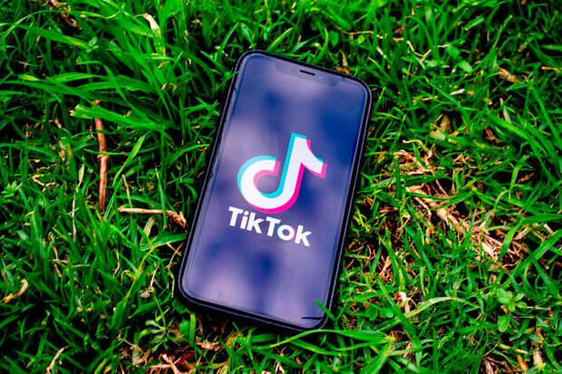 Уральские власти решили бороться сдетскими суицидами спомощью TikTok