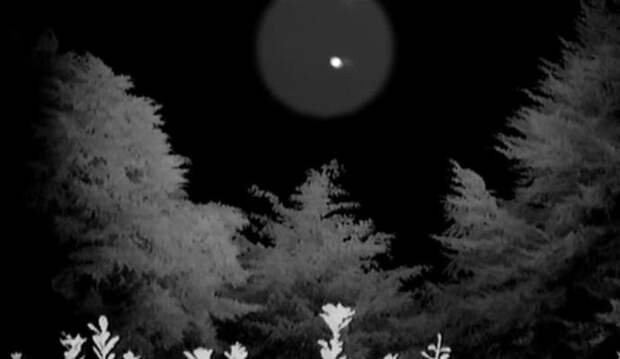 Новозеландцы показали НЛО возле своего дома