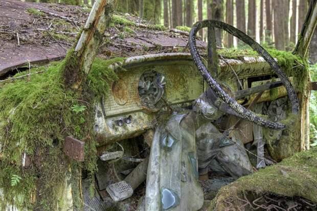 10 машин оставленных человеком природе
