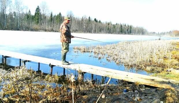 Рыбачите с мостков? Вы нарушаете закон
