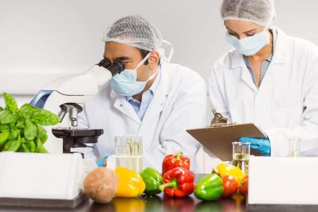 Вы не поверите: экспертами названы два важных элемента здорового питания