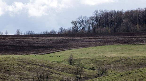 Посол Германии надеется, что немецкие фермеры станут хозяевами земли на Украине