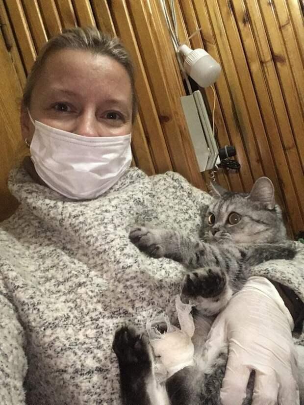 Спасти Барсика: соцработник из Войковского достала осколок из лапы кота