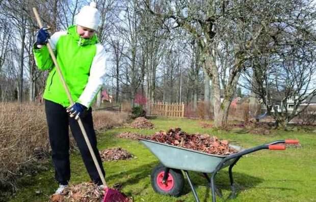 Мартышкин труд: какие работы не нужно делать в саду по весне