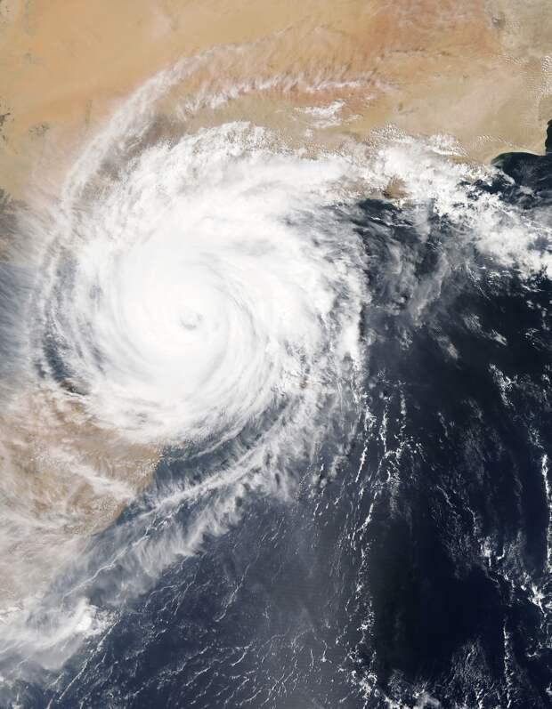 Атмосферные циклоны могут вызывать аномальное «цветение» кокколитофорид