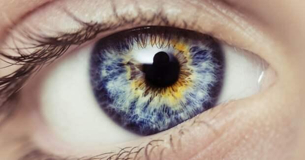 Ученые распознали еще 50 генов, отвечающих за цвет глаз