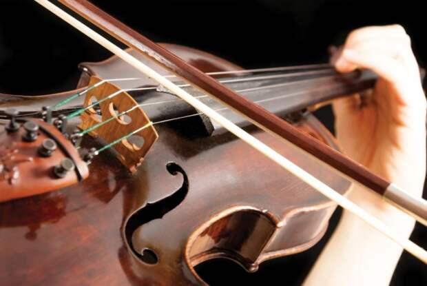Ему прочили будущее талантливого скрипача...