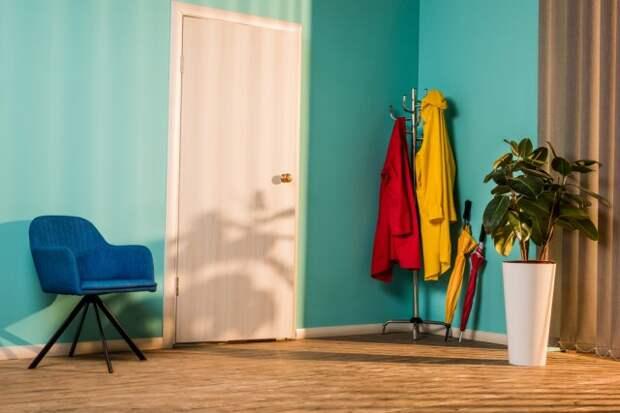 Где поставить комнатные растения