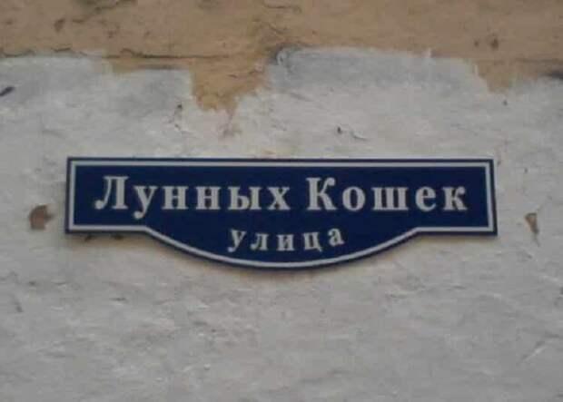 20 названий улиц, которые заставят вас от души посмеяться
