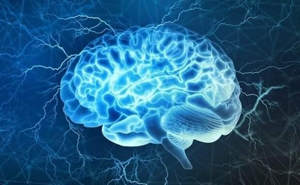 Ученые обнаружили в мозге «включатель» сознания