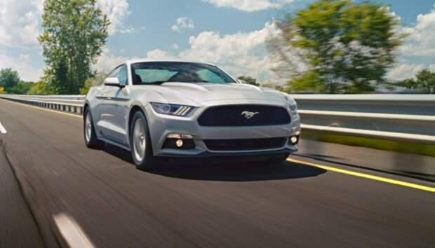 Маслкар из США Ford Mustang/ Фото: thenewswheel.com