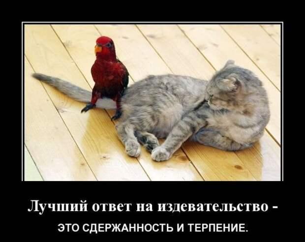 Парочка ничего так:)))