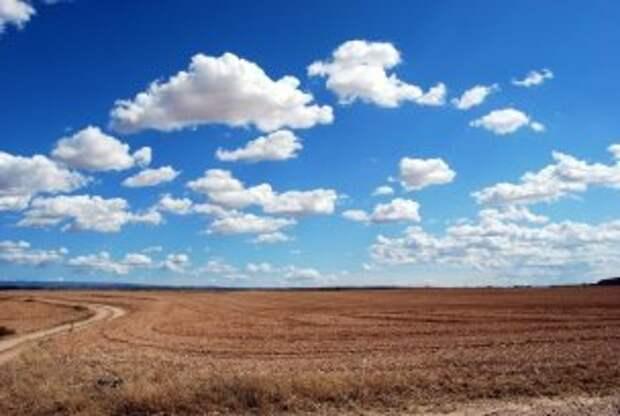 Погода на 21 июня: облачно с прояснениями
