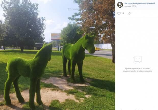 Фото дня: зеленые лошади у «Селигерской»